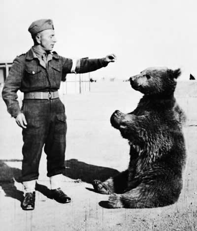 ヴォイテク ポーランド第2軍団 伍長の熊