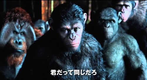 猿の惑星 君だって同じだろ
