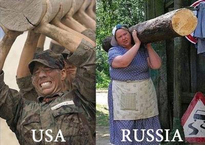 ロシア 丸太 RUSSIA USA 比較