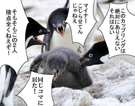ペンギン 寄って集って カップリング
