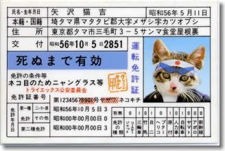 矢沢猫吉 運転免許証 死ぬまで有効
